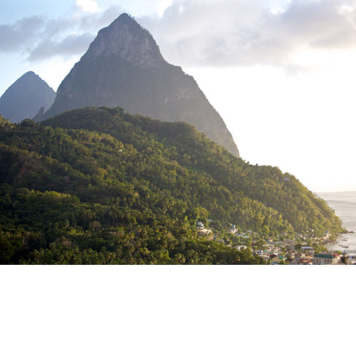 Prodigal-Dog_St_Lucia_Pitons_thumb